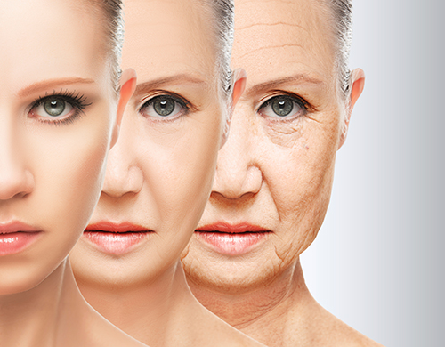 ageing-process
